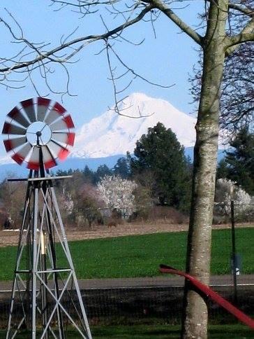 Woodburn, 97071, Woodburn Mt. Hood View, Woodburn Horse Property, Woodburn Oregon, Woodburn Acreage, Woodburn Custom Home, Woodburn Farm, Woodburn Ranch